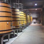 Vinařství Castra Rubra